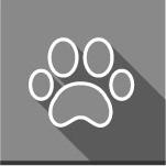 huisdieren.png